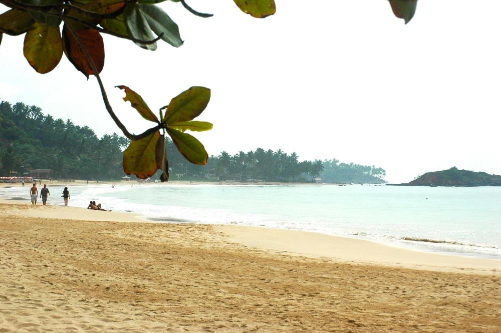 Mirissa Beach (1/6)