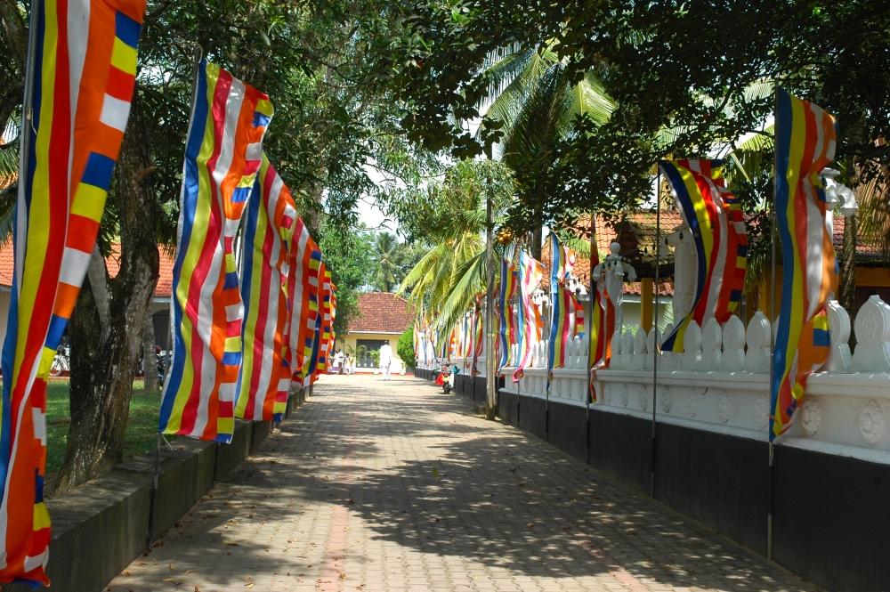 Three Months In Sri Lanka - Week 2 (2/6)