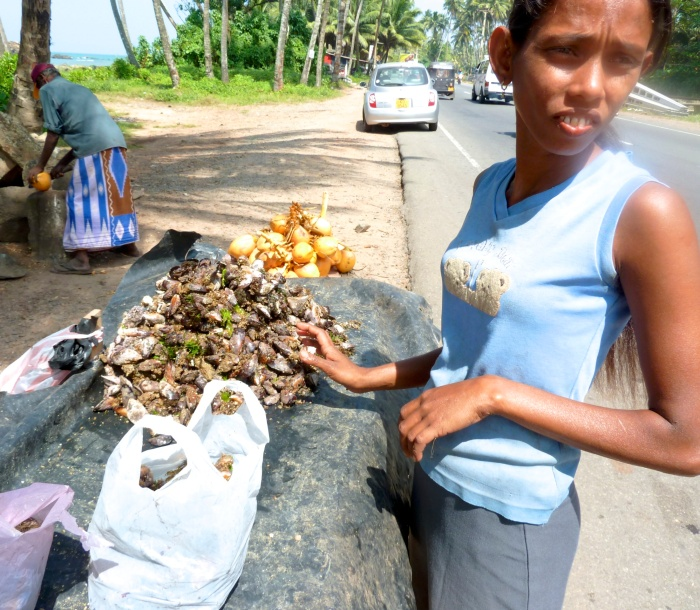 A girl selling fresh, wild mussels