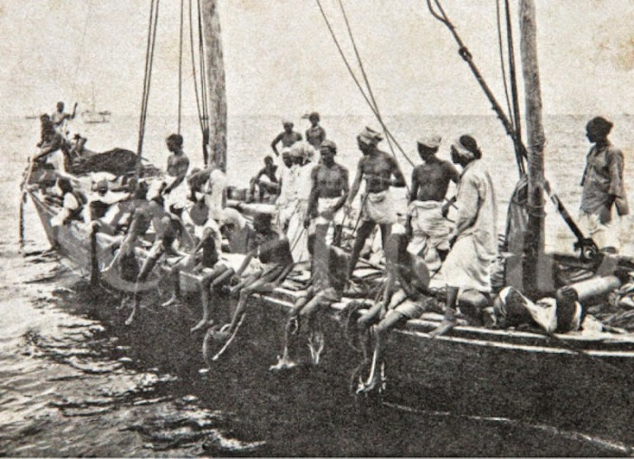 An old photograph of pearl divers