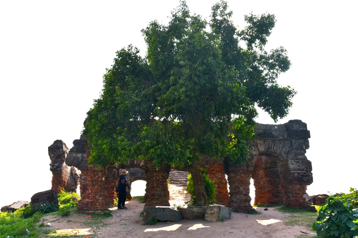 The Doric of Arippu