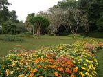 henarathgoda_botanical_garden